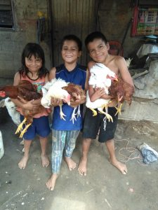 Rapalo Brothers With their Chickens