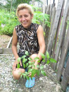 Beneficiary with a paraiso tree