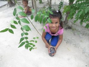 Little girl with a paraiso tree